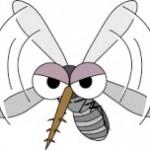 デング熱!蚊の種類と予防や対策!症状や治療法は?ワクチンはある?